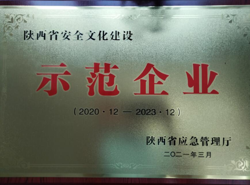 热烈祝贺我司荣获省级安全文化建设示范企业